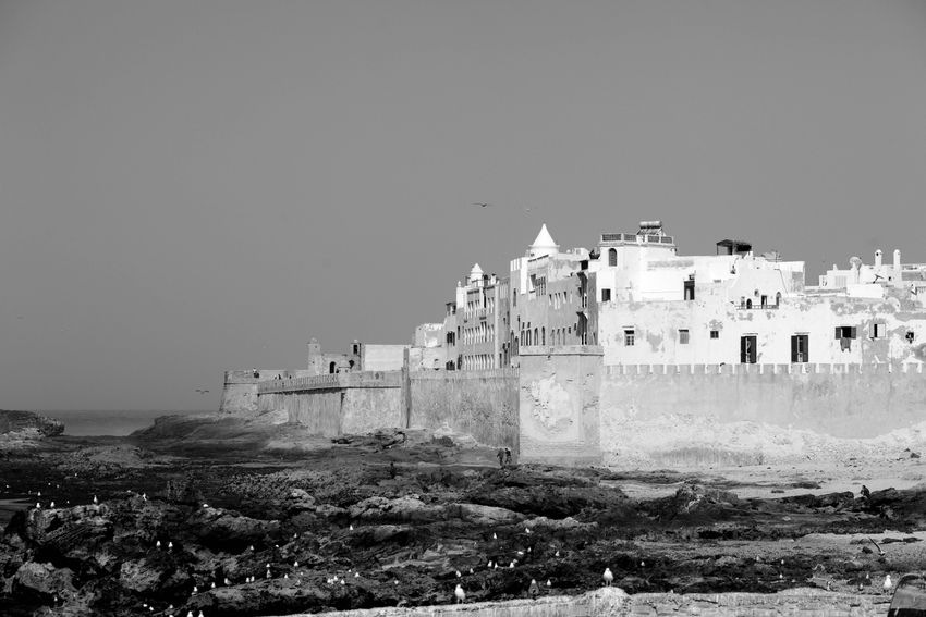 The Photodiarist- ESSAOUIRA No. 4