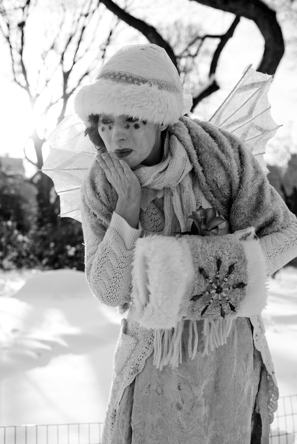 WINTER WOODLAND FAIRY