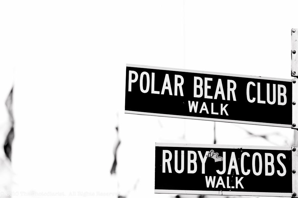 POLAR BEAR CLUB VII