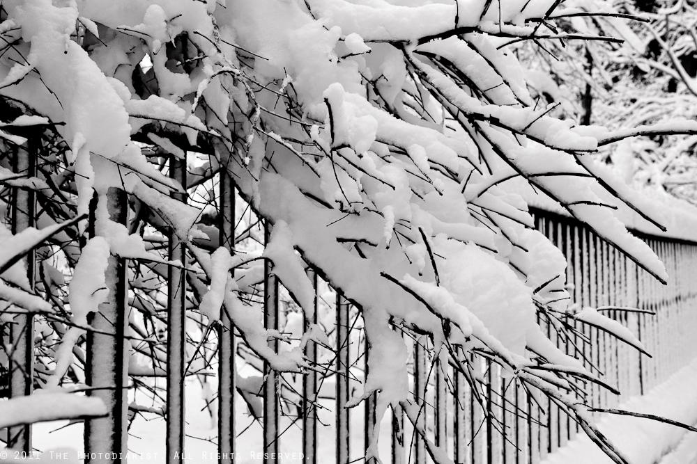 SNOW STORM IV