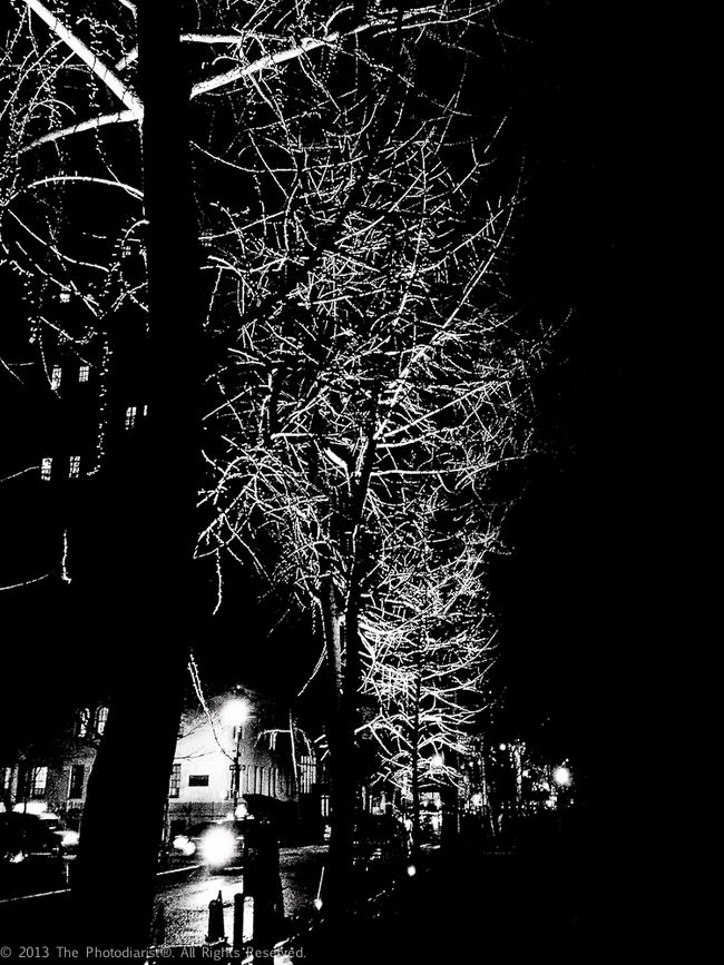 TREE LIGHTS ON GRAMERCY PARK