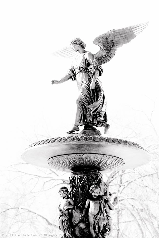CENTRAL PARK- ANGEL OF THE WATERS II
