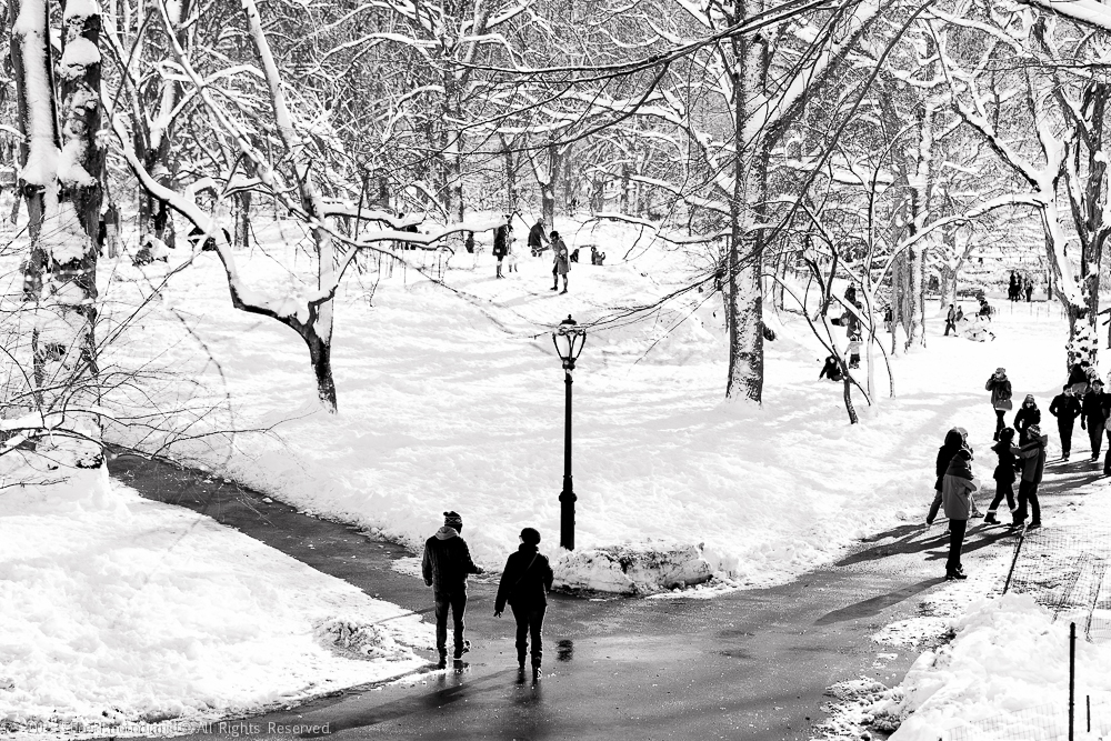 CENTRAL PARK- ONE SNOWY DAY